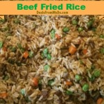 Beef Fried Rice Freezes Well