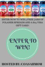 Polaner Fruit Spread & $25 Visa Gift Card Giveaway