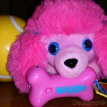 LuLu and her Chase & Play Ball from The Happy's & ZhuZhu Pets