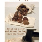 Soap Nuts & Dryer Balls for Chemical Free Laundry